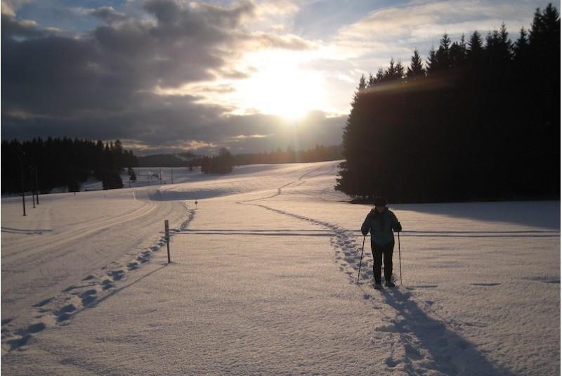 Schneeschuhausflug bei...
