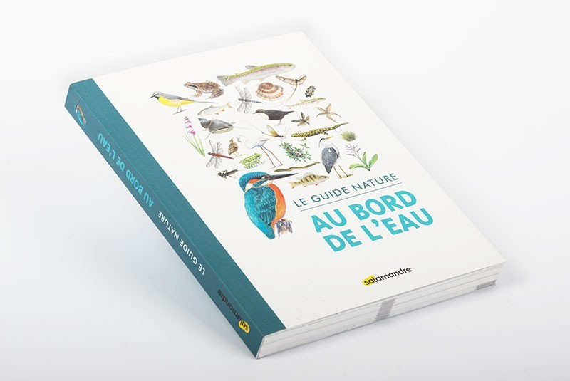 Le guide nature |Au bord de l'eau