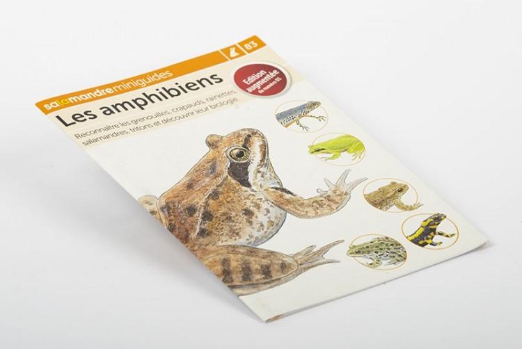 Les amphibiens   Miniguide n° 83