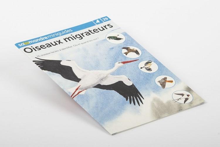 Oiseaux migrateurs | Miniguide n°29