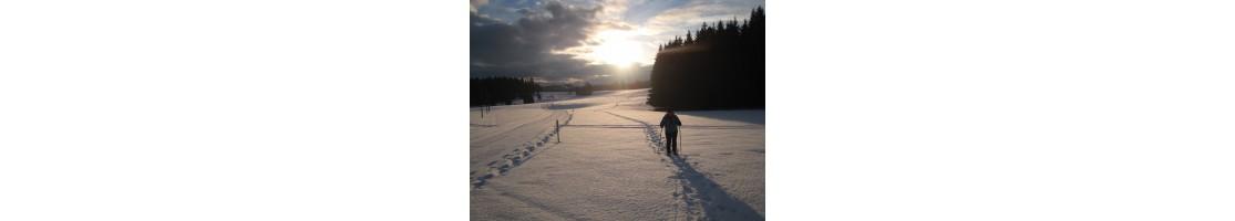 Vollmond-Schneeschuhwanderung im Val-de-Travers buchen